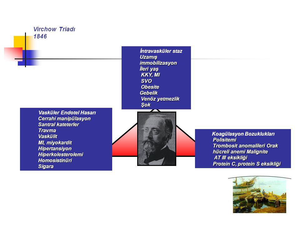 Virchow Triadı 1846 İntravasküler staz Uzamış immobilizasyon İleri yaş