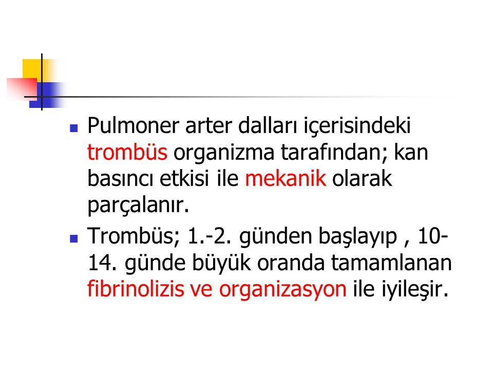 Pulmoner arter dalları içerisindeki trombüs organizma tarafından; kan basıncı etkisi ile mekanik olarak parçalanır.