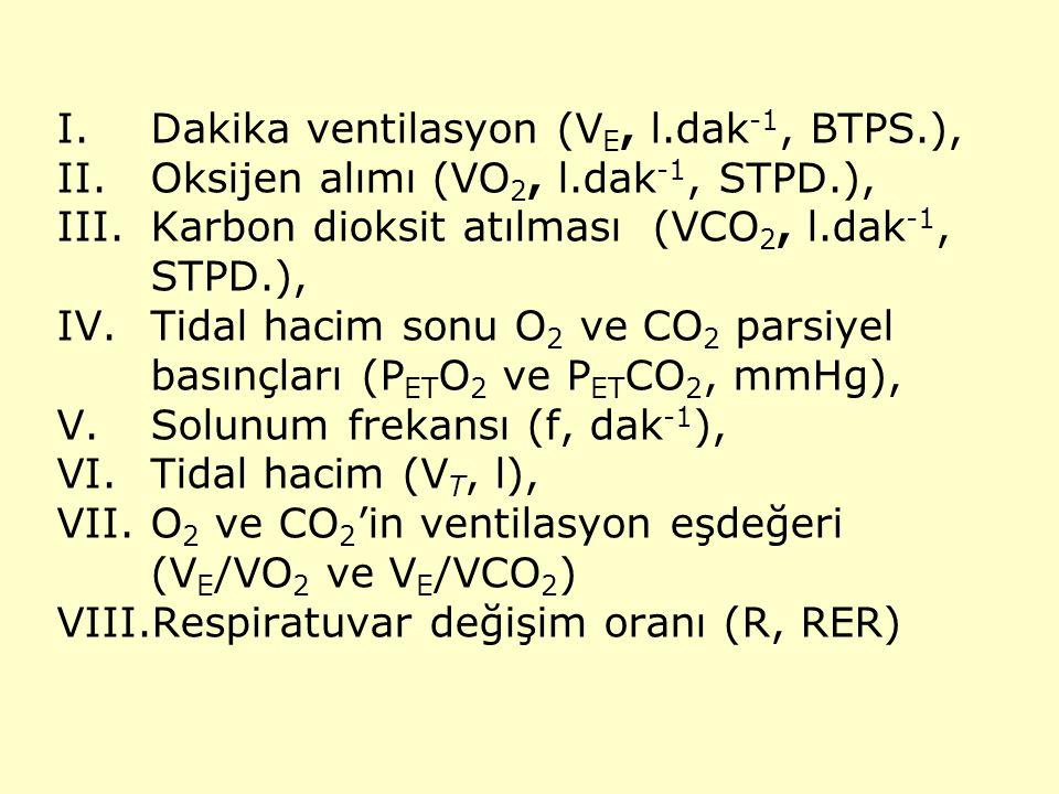 Dakika ventilasyon (VE, l.dak-1, BTPS.),
