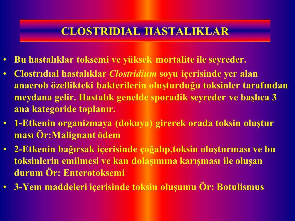 CLOSTRIDIAL HASTALIKLAR