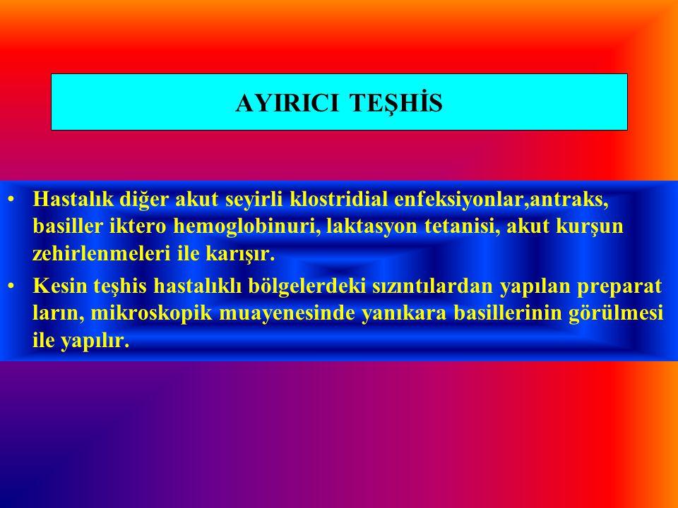AYIRICI TEŞHİS