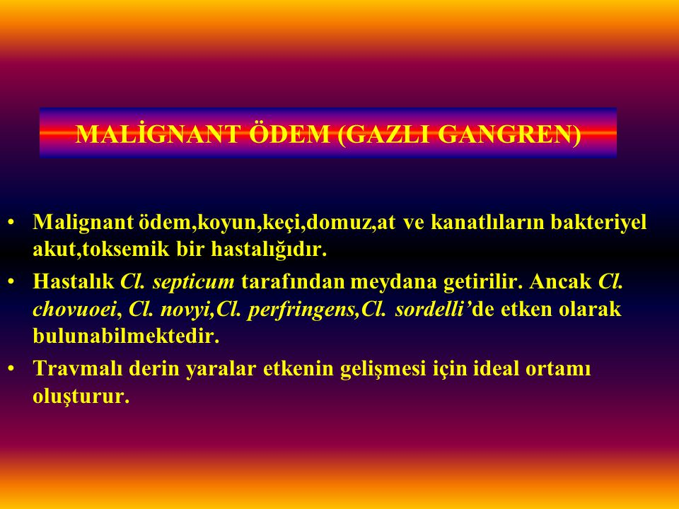 MALİGNANT ÖDEM (GAZLI GANGREN)