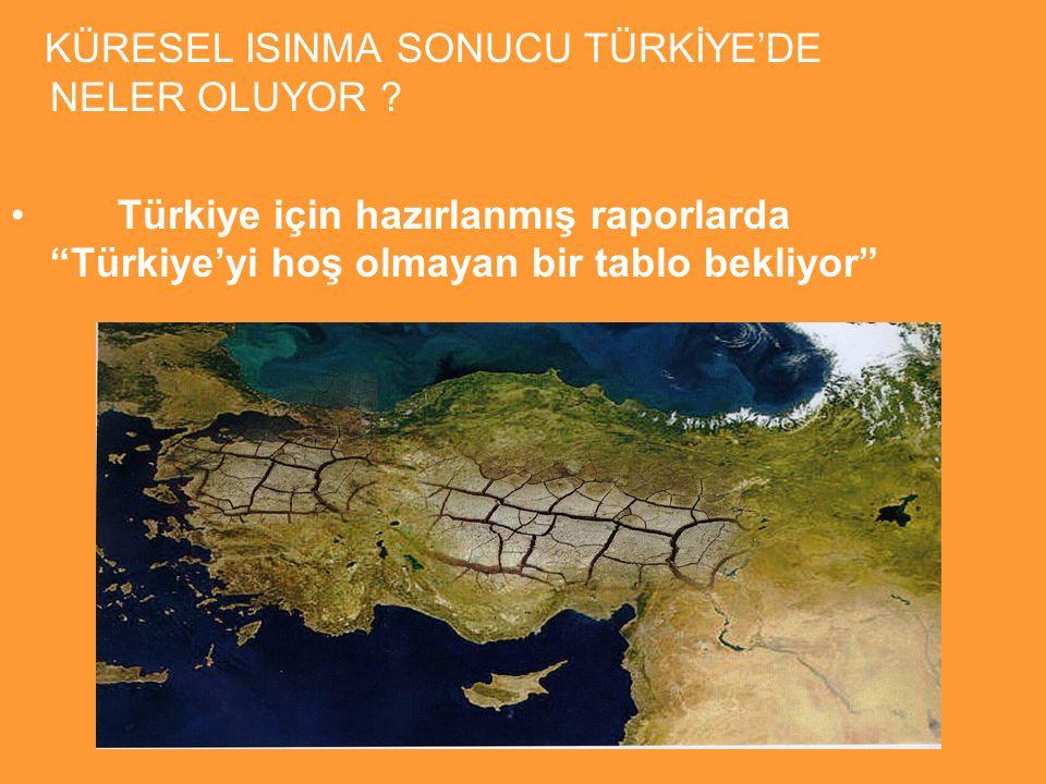 KÜRESEL ISINMA SONUCU TÜRKİYE'DE NELER OLUYOR