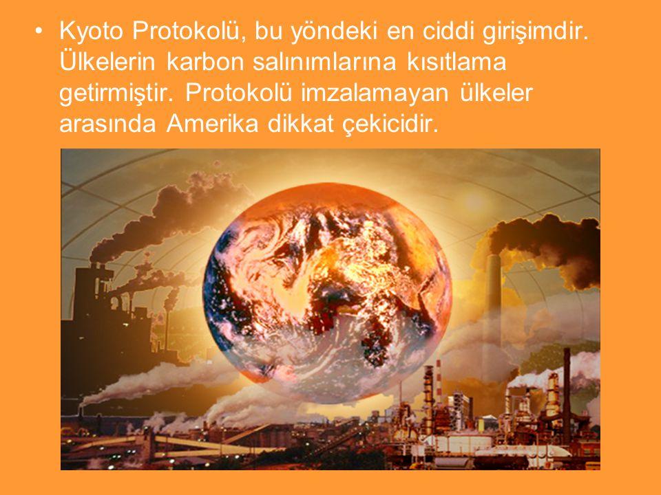 Kyoto Protokolü, bu yöndeki en ciddi girişimdir