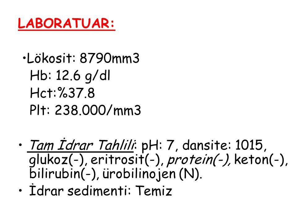 LABORATUAR: •Lökosit: 8790mm3. Hb: 12.6 g/dl. Hct:%37.8. Plt: 238.000/mm3.