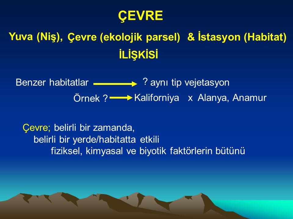 ÇEVRE Yuva (Niş), Çevre (ekolojik parsel) & İstasyon (Habitat)