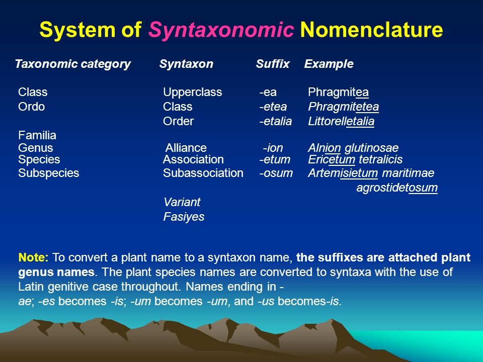 System of Syntaxonomic Nomenclature