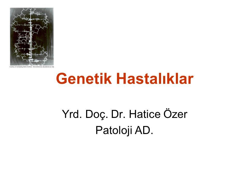 Yrd. Doç. Dr. Hatice Özer Patoloji AD.