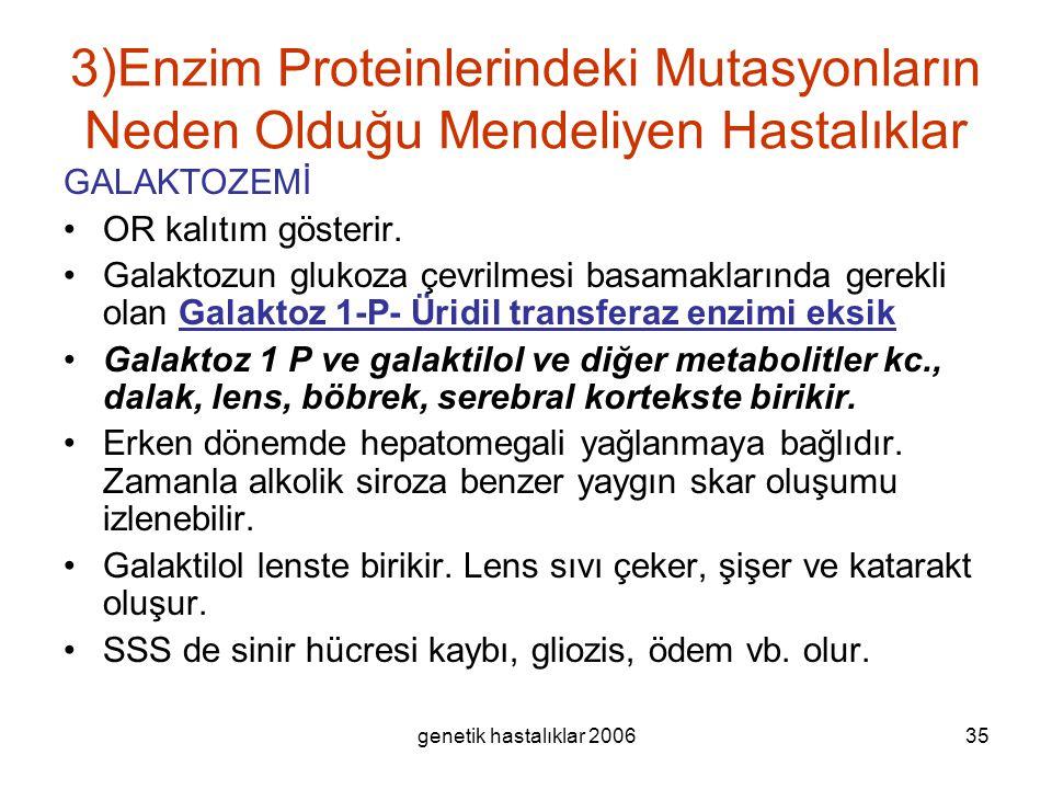 3)Enzim Proteinlerindeki Mutasyonların Neden Olduğu Mendeliyen Hastalıklar