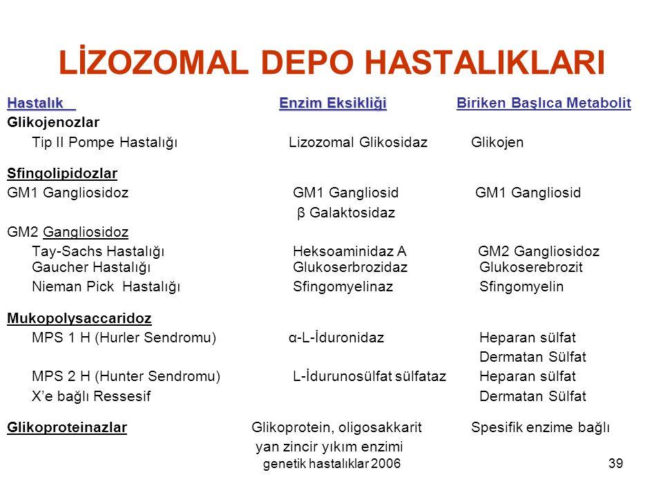 LİZOZOMAL DEPO HASTALIKLARI