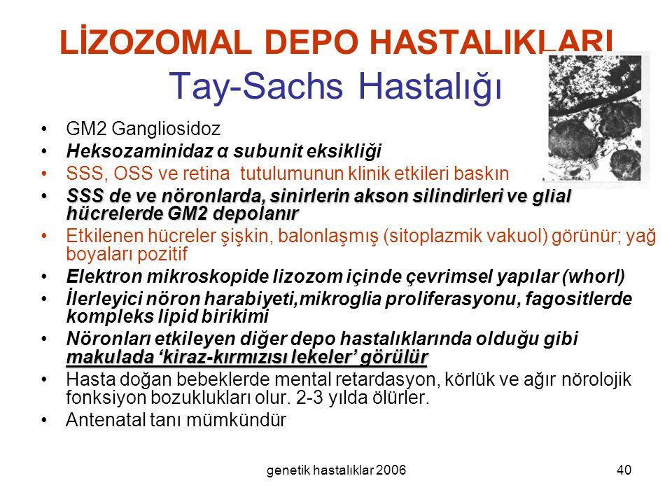 LİZOZOMAL DEPO HASTALIKLARI Tay-Sachs Hastalığı