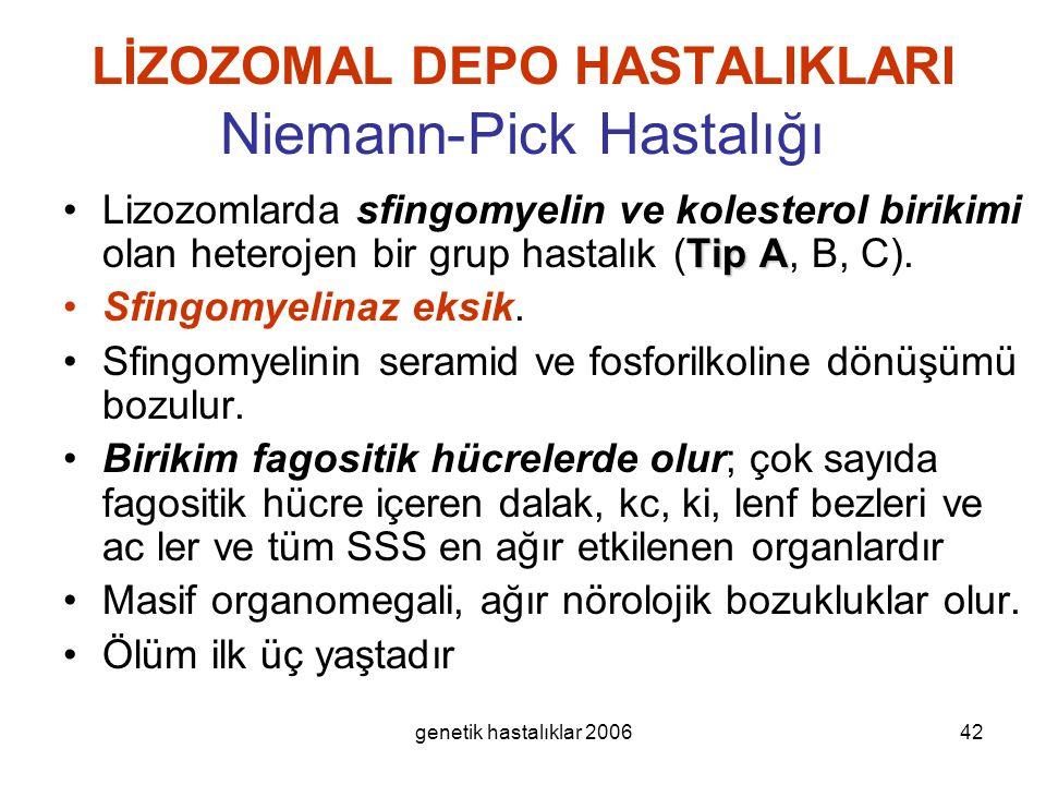 LİZOZOMAL DEPO HASTALIKLARI Niemann-Pick Hastalığı