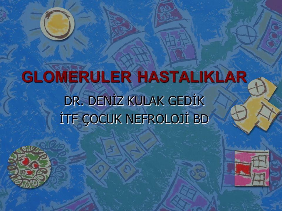 GLOMERULER HASTALIKLAR
