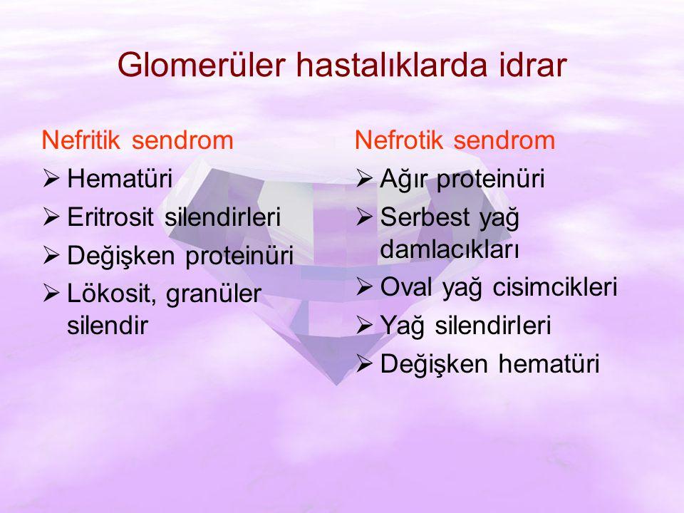 Glomerüler hastalıklarda idrar
