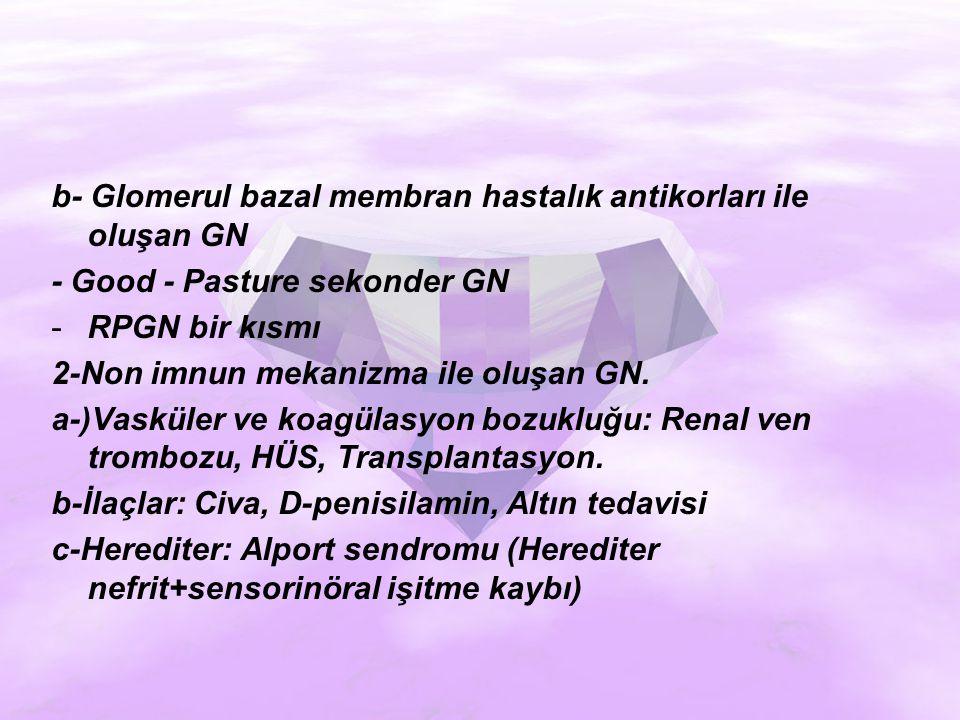 b- Glomerul bazal membran hastalık antikorları ile oluşan GN
