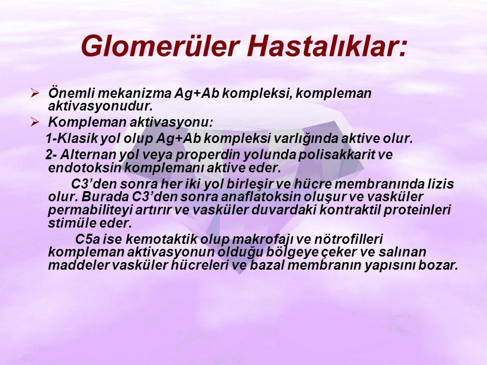 Glomerüler Hastalıklar: