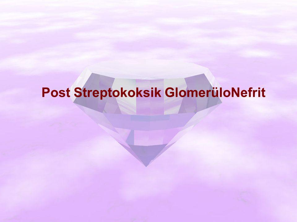 Post Streptokoksik GlomerüloNefrit