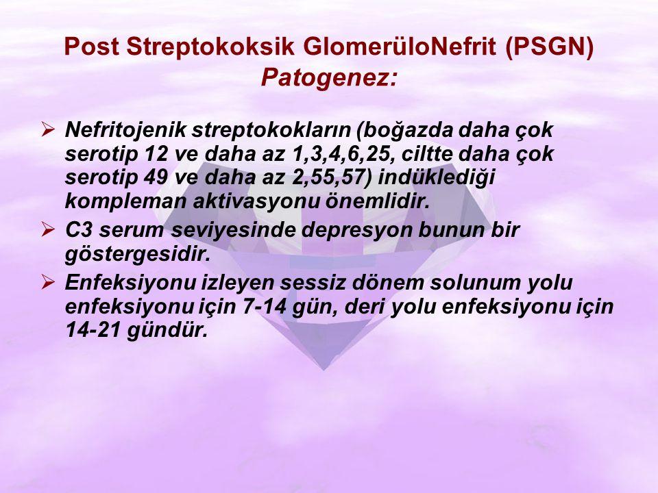 Post Streptokoksik GlomerüloNefrit (PSGN) Patogenez: