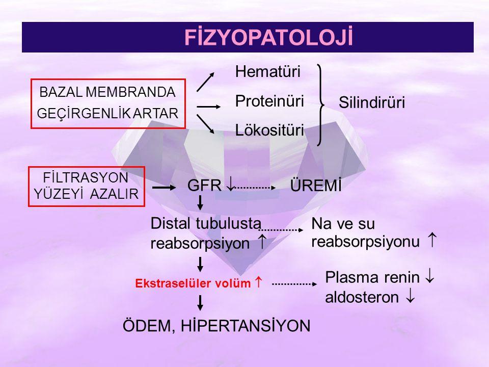 FİZYOPATOLOJİ Hematüri Proteinüri Lökositüri Silindirüri GFR  ÜREMİ