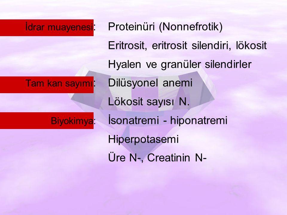 İdrar muayenesi: Proteinüri (Nonnefrotik)