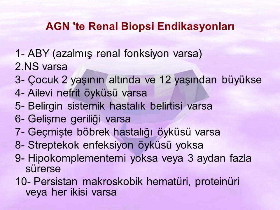 AGN te Renal Biopsi Endikasyonları