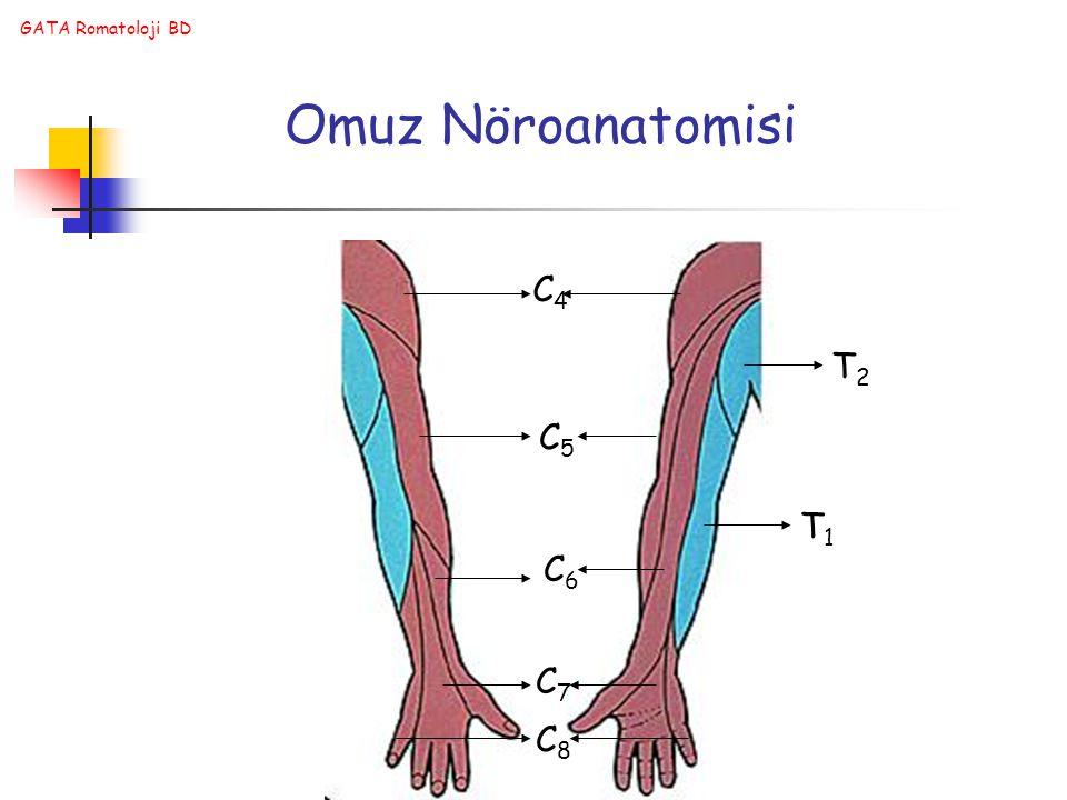 Omuz Nöroanatomisi C4 T2 C5 T1 C6 C7 C8