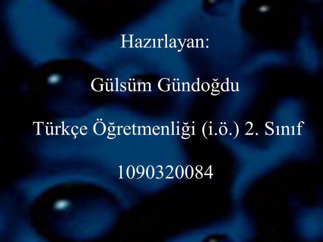 Hazırlayan: Gülsüm Gündoğdu Türkçe Öğretmenliği (i. ö. ) 2