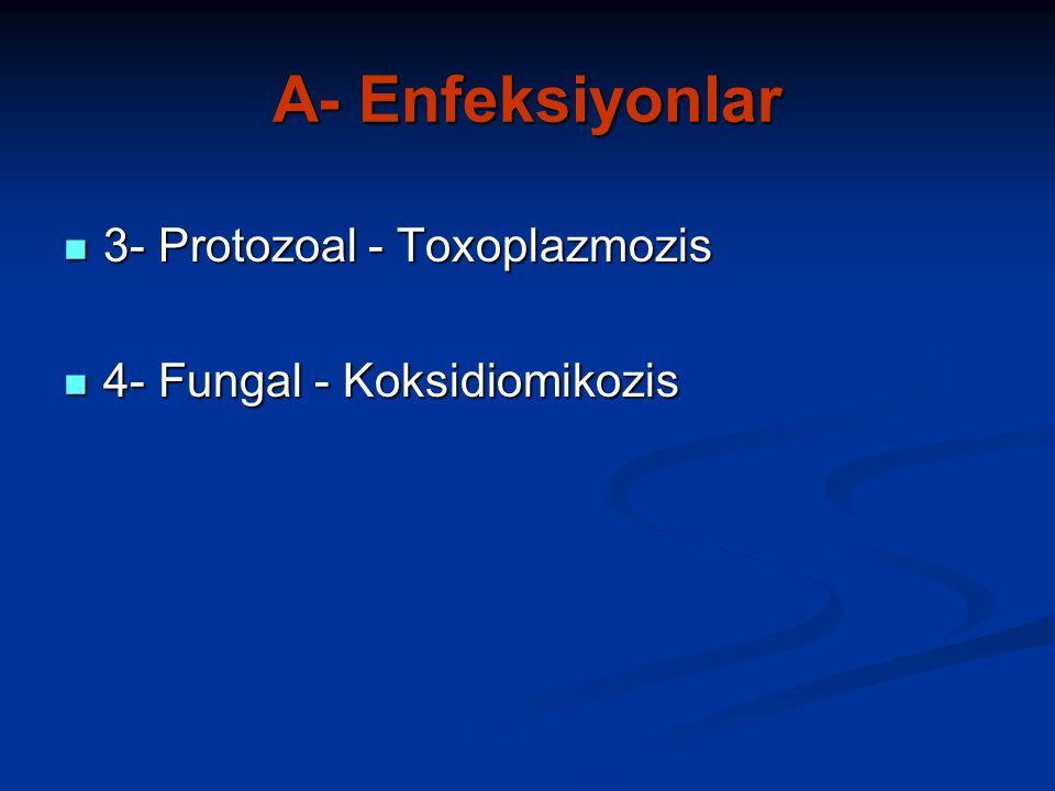 A- Enfeksiyonlar 3- Protozoal - Toxoplazmozis