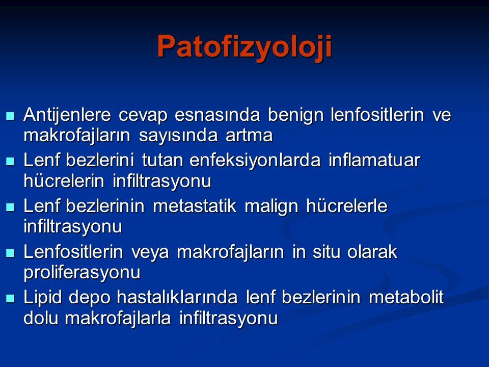 Patofizyoloji Antijenlere cevap esnasında benign lenfositlerin ve makrofajların sayısında artma.