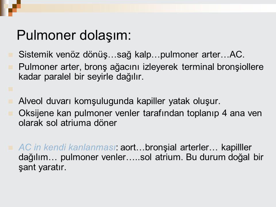 Pulmoner dolaşım: Sistemik venöz dönüş…sağ kalp…pulmoner arter…AC.