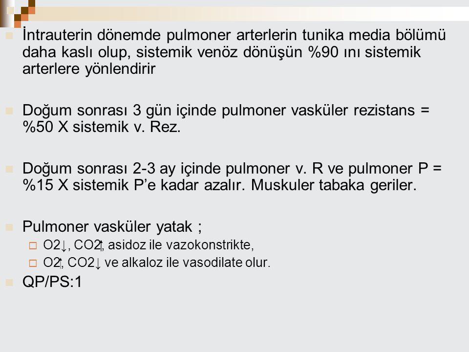 Pulmoner vasküler yatak ;