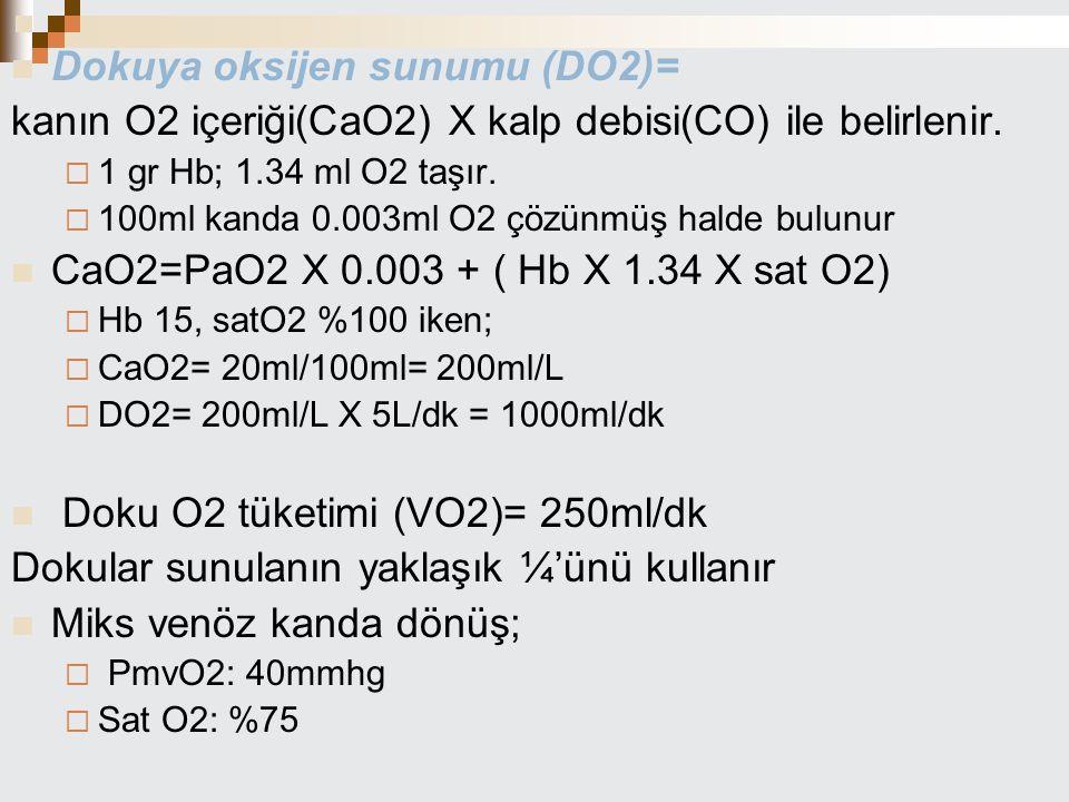 Dokuya oksijen sunumu (DO2)=