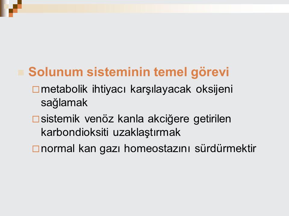 Solunum sisteminin temel görevi