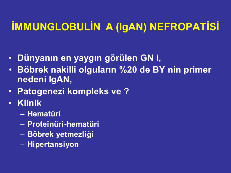 İMMUNGLOBULİN A (IgAN) NEFROPATİSİ