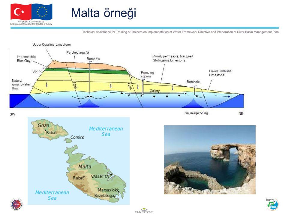 Malta örneği