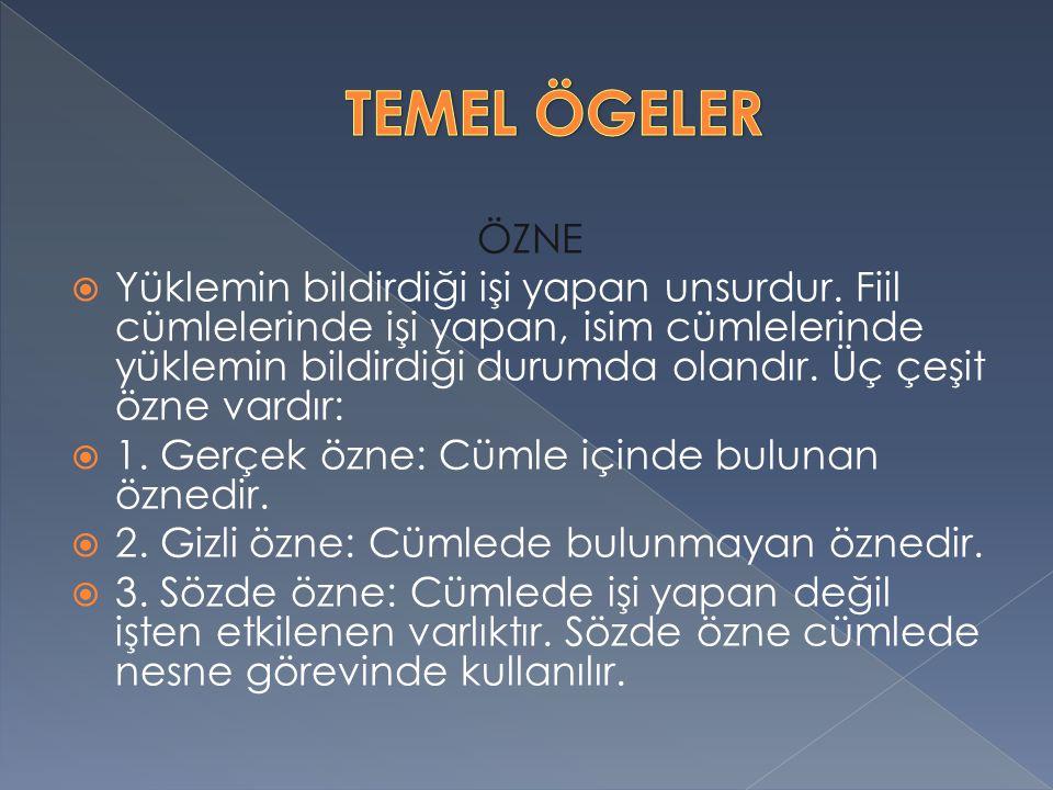 TEMEL ÖGELER ÖZNE.