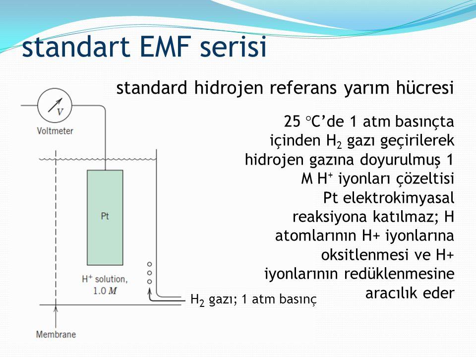 standart EMF serisi standard hidrojen referans yarım hücresi