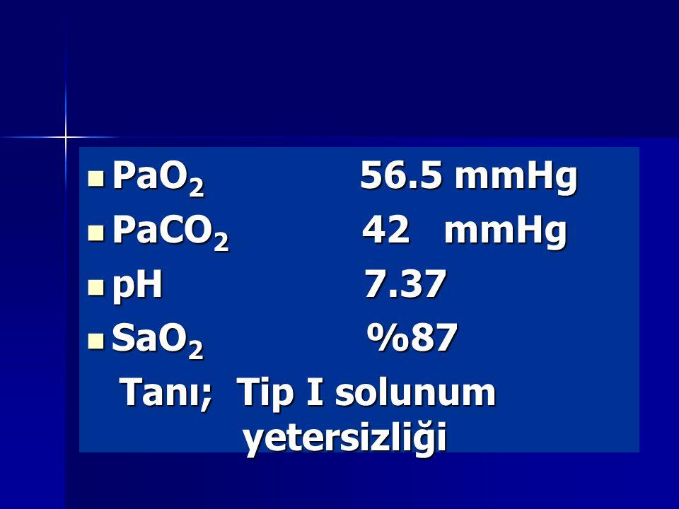 PaO2 56.5 mmHg PaCO2 42 mmHg. pH 7.37. SaO2 %87.