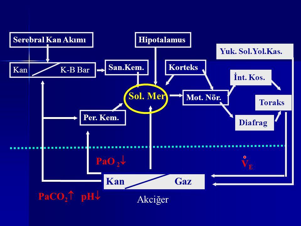 Sol. Mer PaO 2 VE Kan Gaz PaCO2 pH Akciğer Serebral Kan Akımı