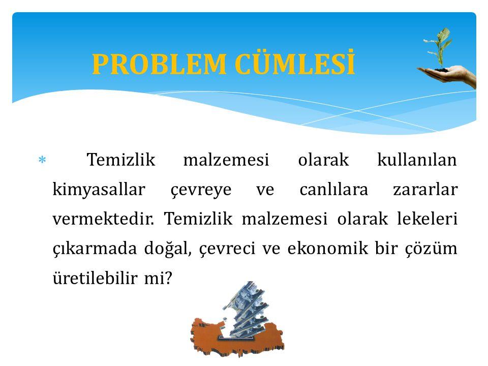 PROBLEM CÜMLESİ
