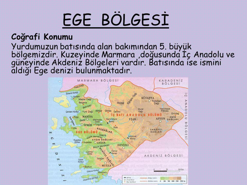 EGE BÖLGESİ Coğrafi Konumu