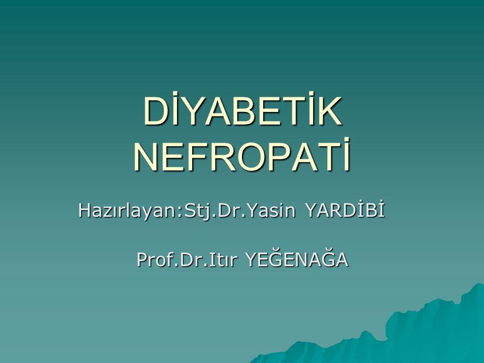 Hazırlayan:Stj.Dr.Yasin YARDİBİ Prof.Dr.Itır YEĞENAĞA