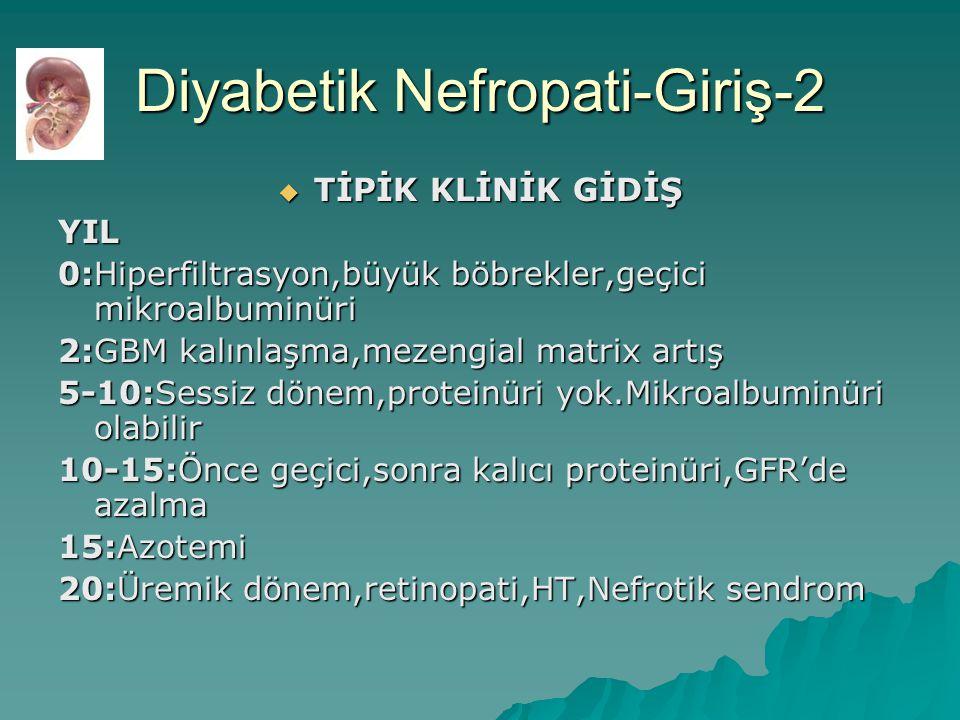 Diyabetik Nefropati-Giriş-2