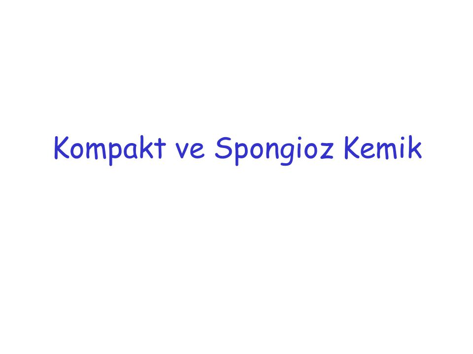 Kompakt ve Spongioz Kemik