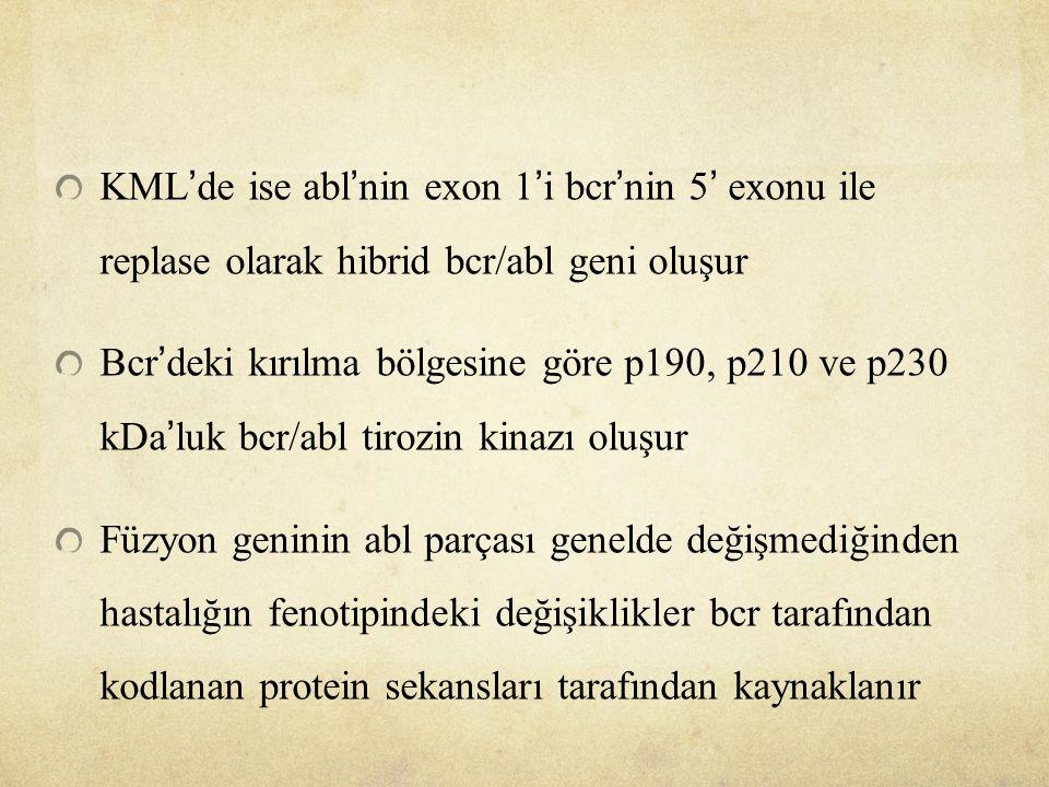 KML'de ise abl'nin exon 1'i bcr'nin 5' exonu ile replase olarak hibrid bcr/abl geni oluşur