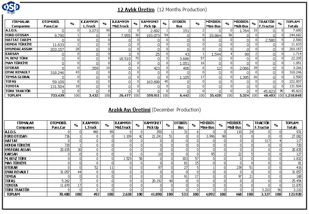12 Aylık Üretim (12 Months Production)