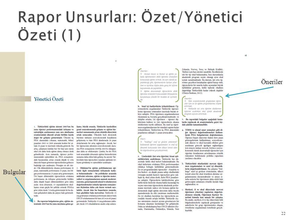 Rapor Unsurları: Özet/Yönetici Özeti (1)