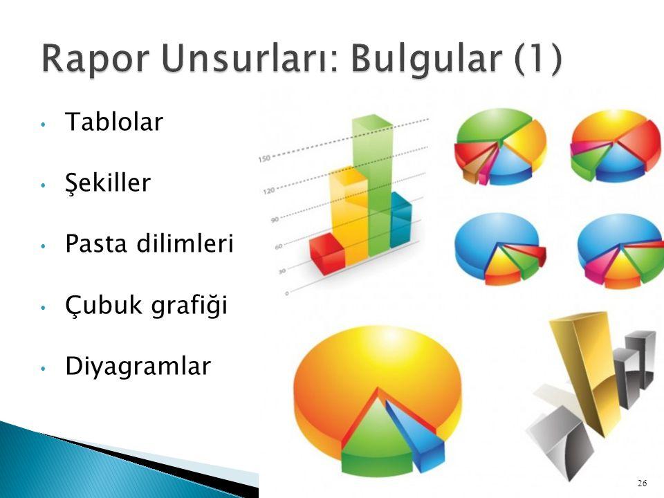 Rapor Unsurları: Bulgular (1)