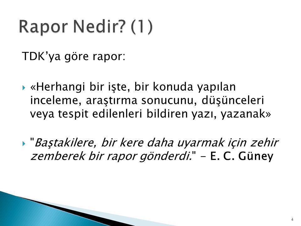 Rapor Nedir (1) TDK'ya göre rapor: