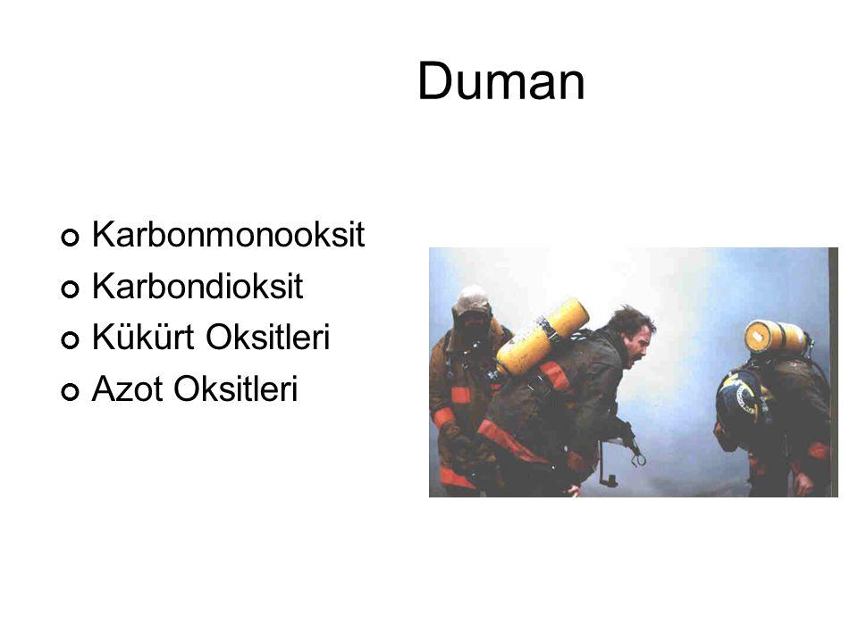 Duman Karbonmonooksit Karbondioksit Kükürt Oksitleri Azot Oksitleri